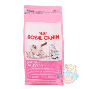 royal-canin-babycat-1