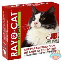 Rayo-Cat