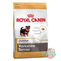 royal-canin-Yorkshire-Terrier-Junior
