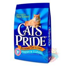 cats-pride-arena-gato-1