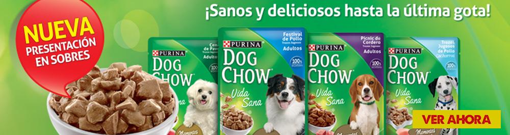 dog chow